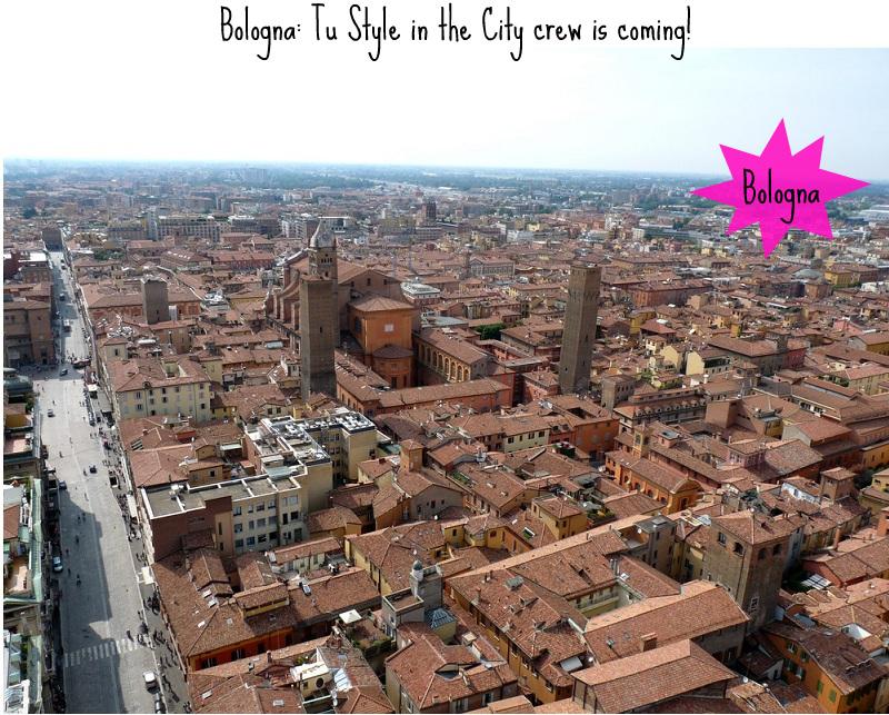 bologna-vista-dalla-torre-asinelli-a19355672-2