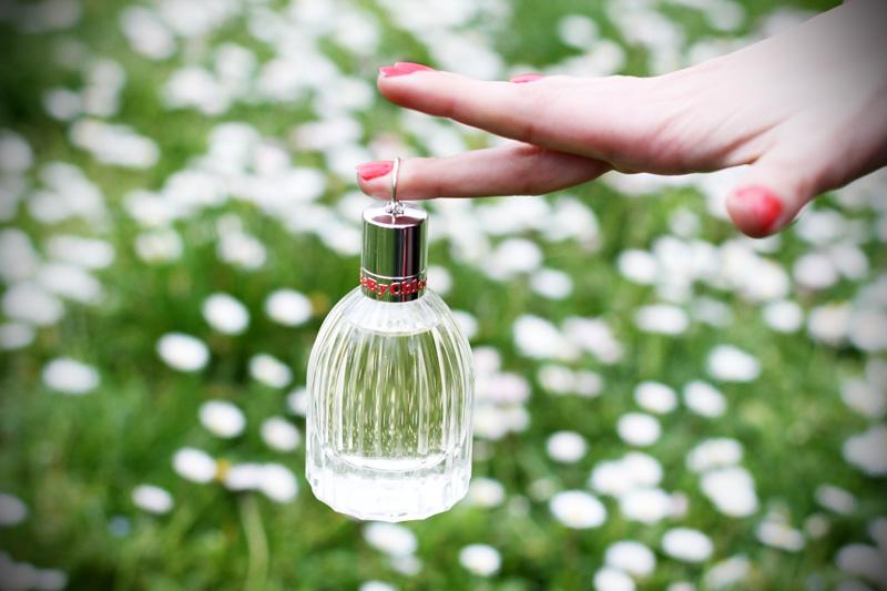 see by chloe profumo parfum campagna pubblicitaria margherite obbligo o verità (3)