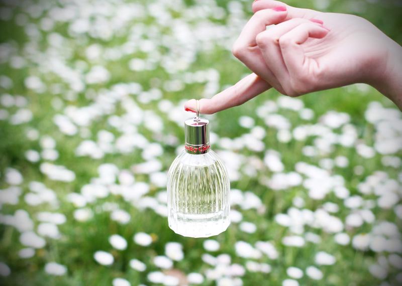 see by chloe profumo parfum campagna pubblicitaria margherite obbligo o verità (4)