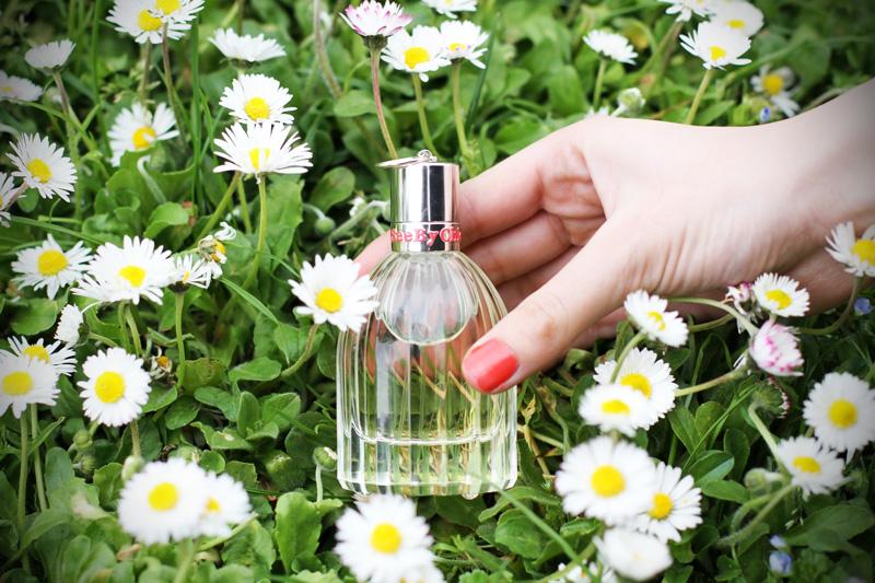 see by chloe profumo parfum campagna pubblicitaria margherite obbligo o verità (8)