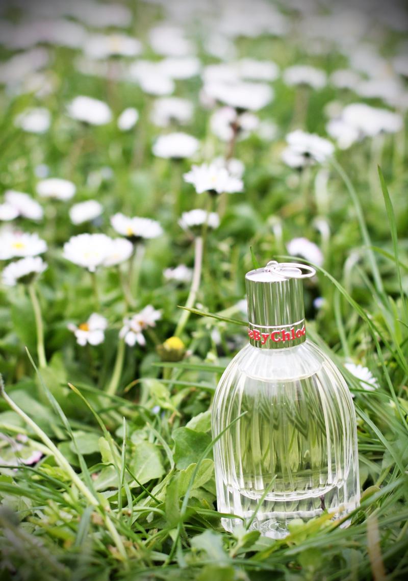 see by chloe profumo parfum campagna pubblicitaria margherite obbligo o verità (9)