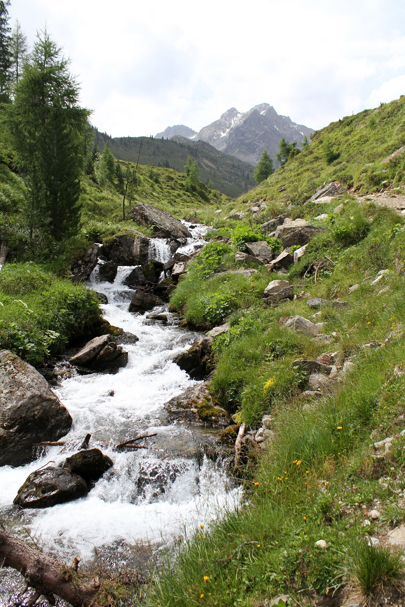 montagna | austria | tirolo | estate | valle verde