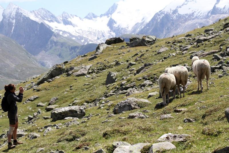 immagini paesaggi | foto paesaggi | montagna estate | solden | tirolo | austria | valle verde | valle otzal 2