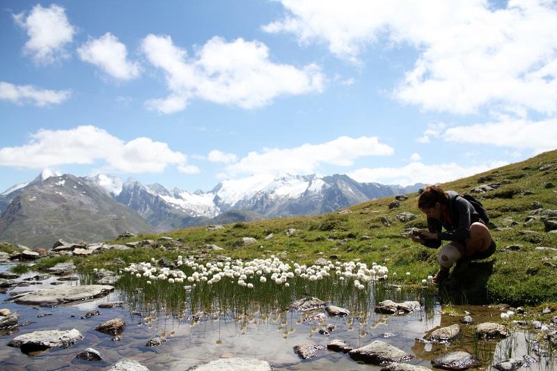 immagini paesaggi | foto paesaggi | montagna estate | solden | tirolo | austria | valle verde | valle otzal 4