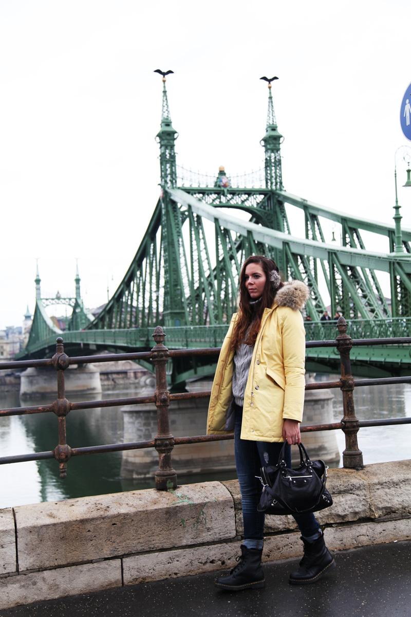 danubio budapest natale 2013