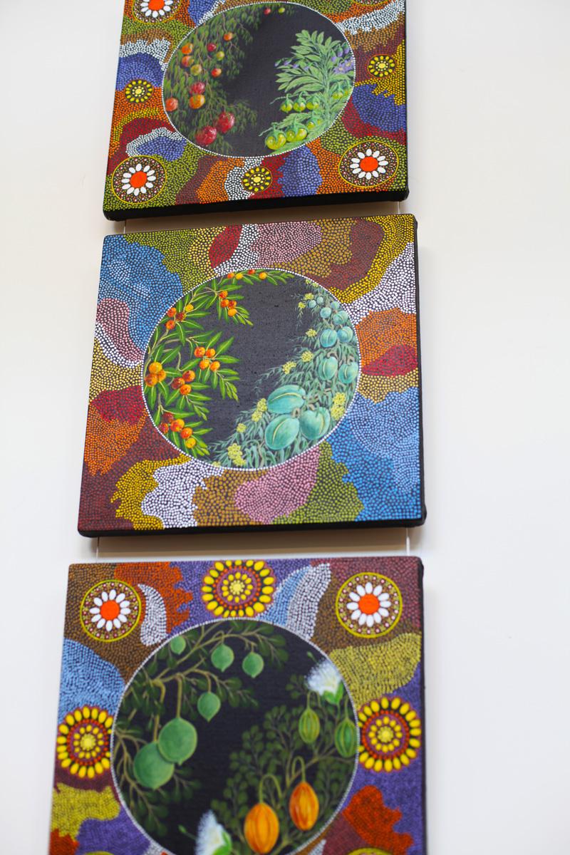 arte aborigena (4)
