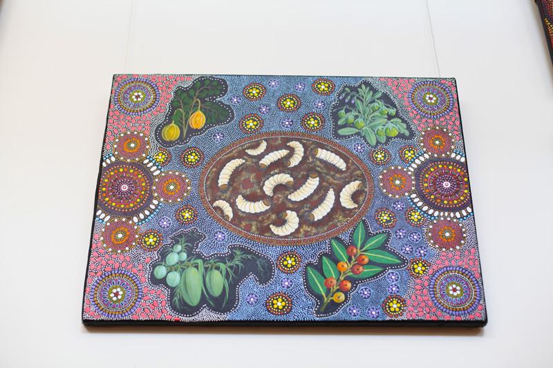 arte aborigena (5)