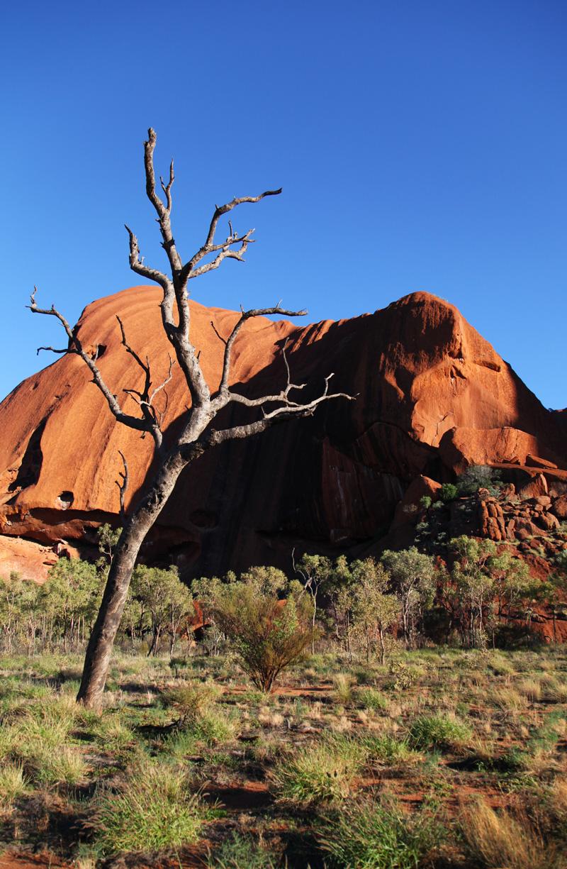 ayers rock uluru australia (9)