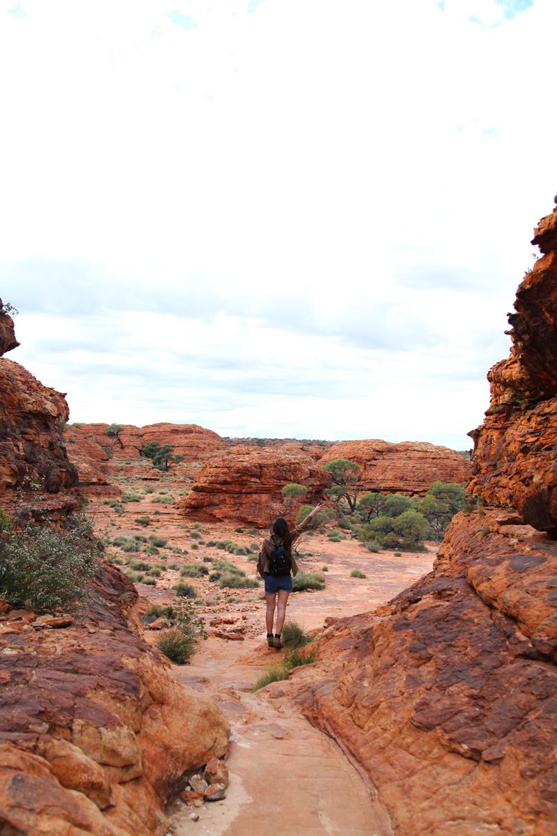 kings canyon (21)