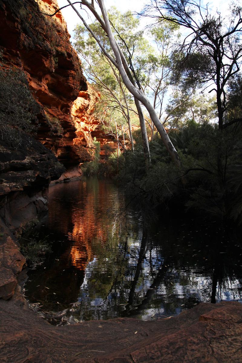 kings canyon (29)