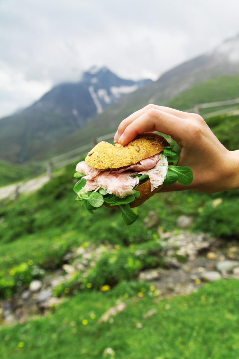 vacanze in montagna austria parco alti tauri (9)