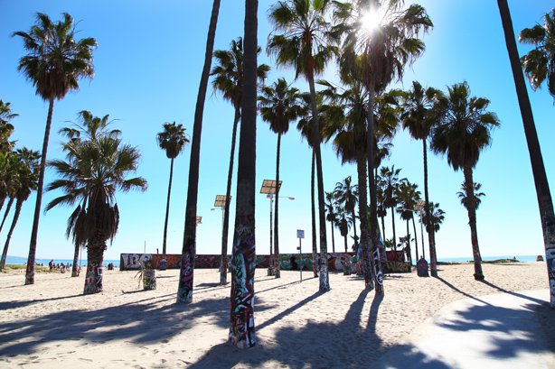 venice beach california (3)