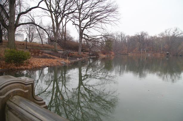 central park new york (1)