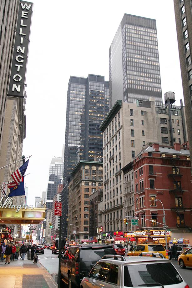 manhattan new york (5)
