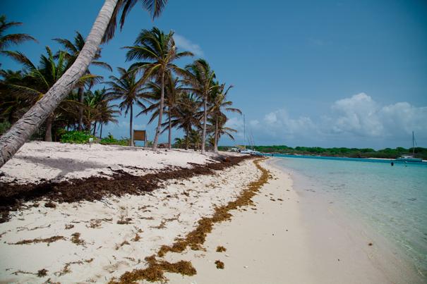 spiaggia guadalupa