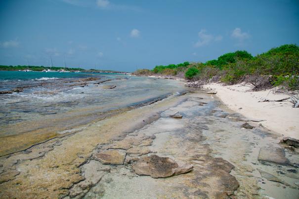 spiagge caraibiche
