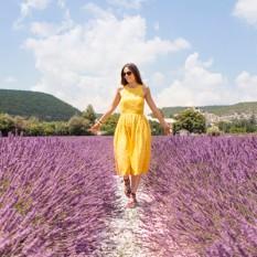 lavanda-provenza-(2)-copertina-post