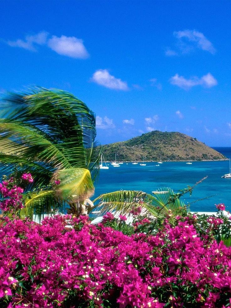 st marten caraibi