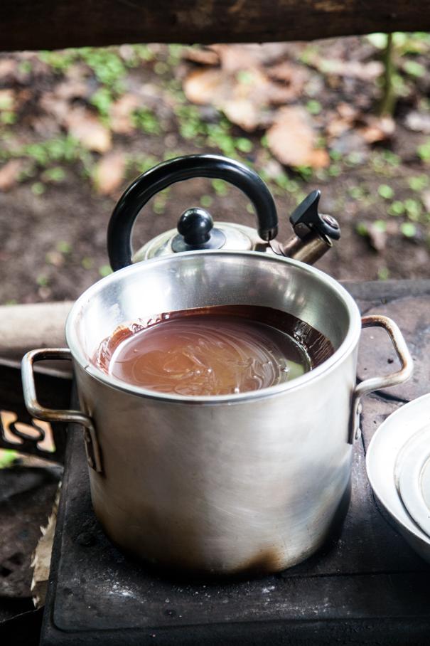 piantagione di cioccolata