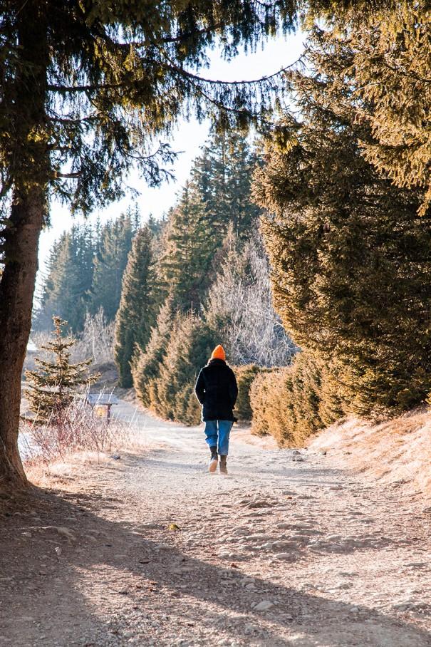 il cammino in montagna