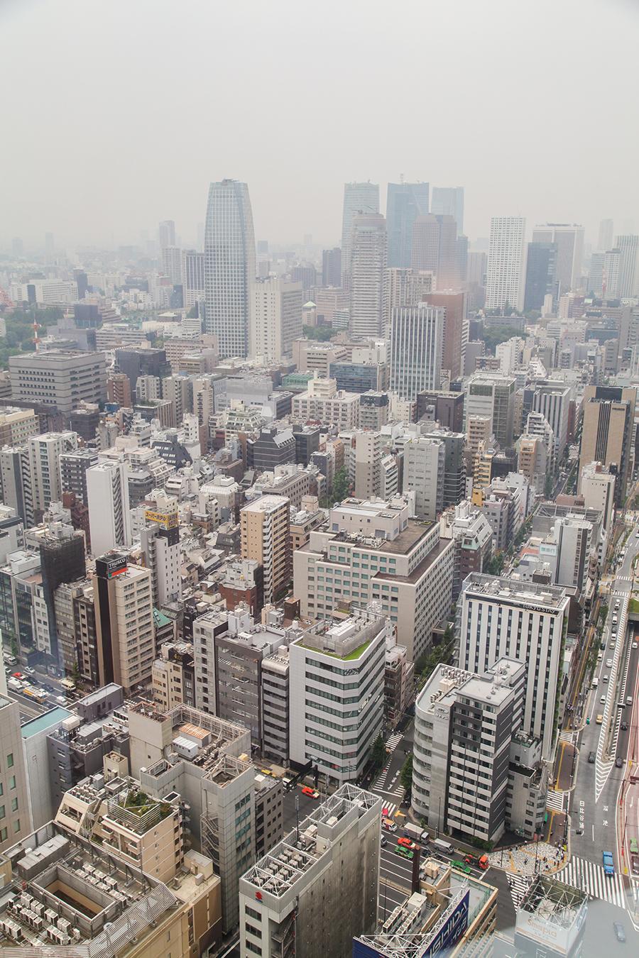 panorama tokyo metropoli