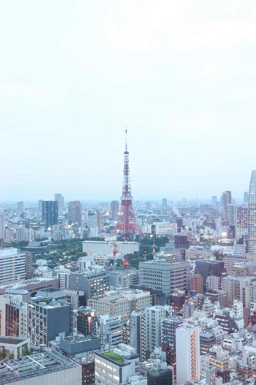 tokyo tower panorama tokyo