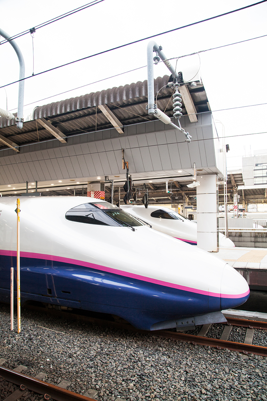 treni shinkansen japana rail pass giappone