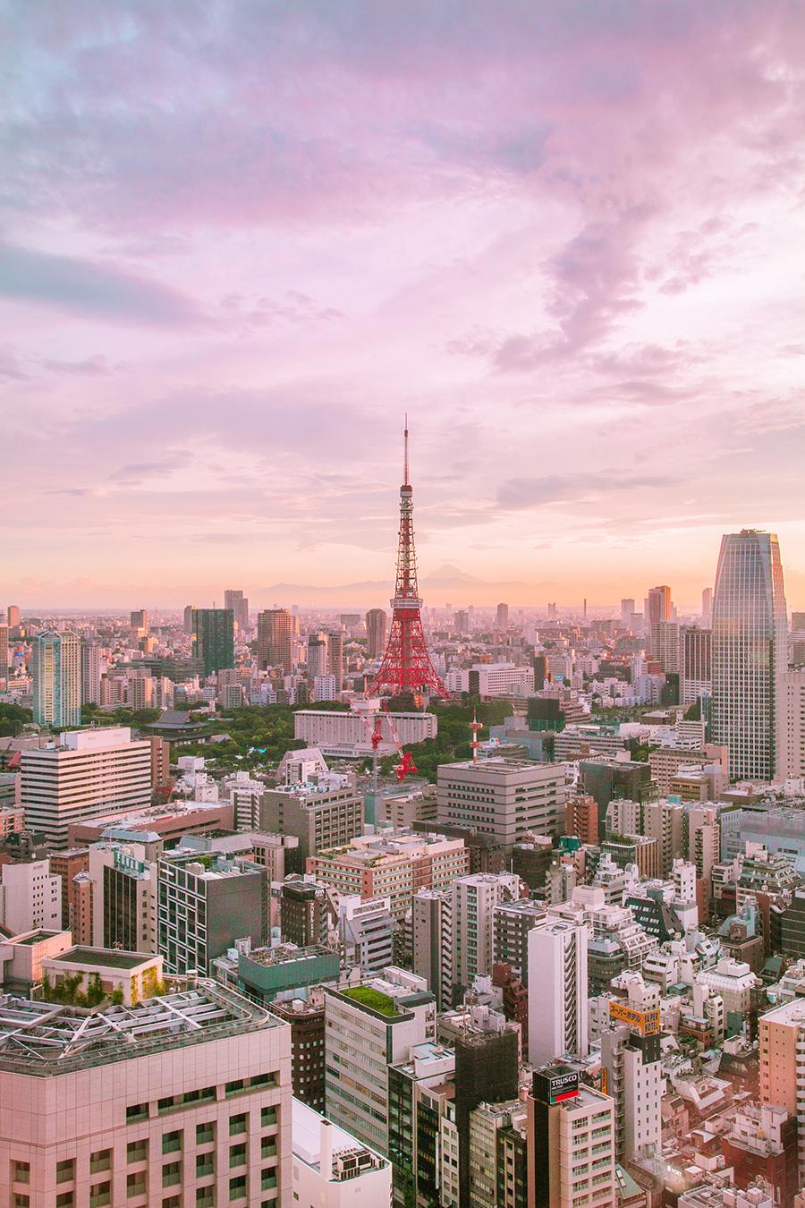 vista panorama tokyo dal park hotel