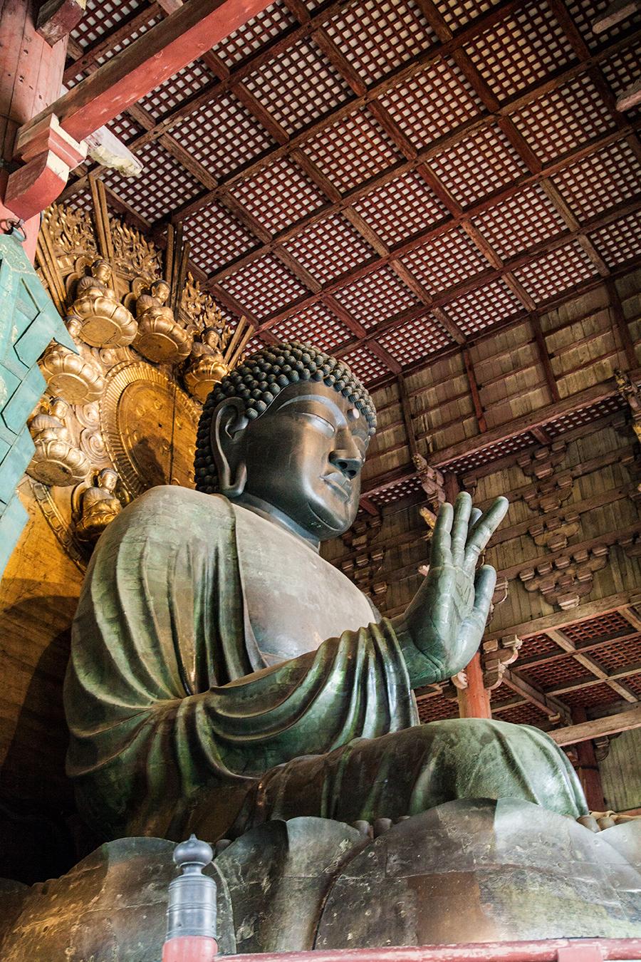 grande buddha di nara