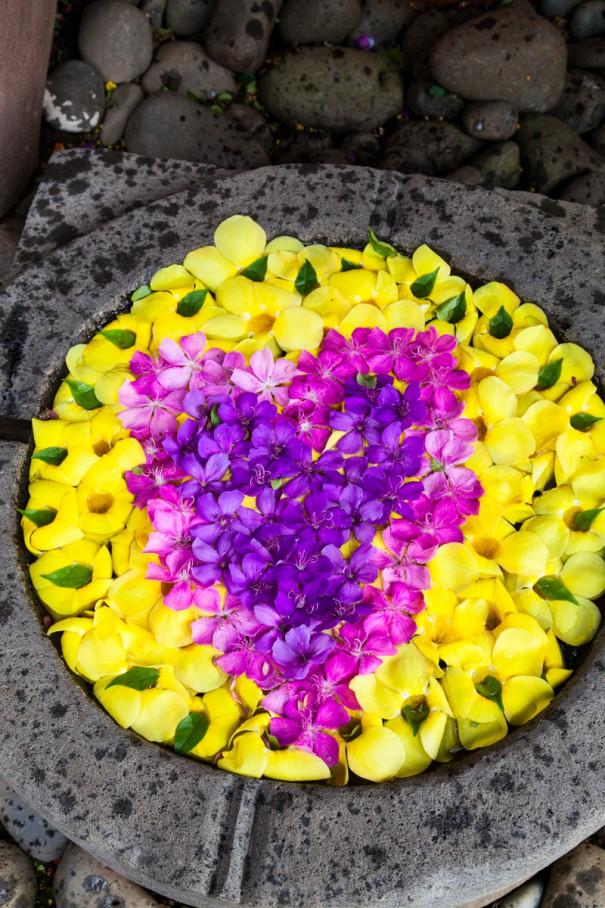 mauritius chamarel area