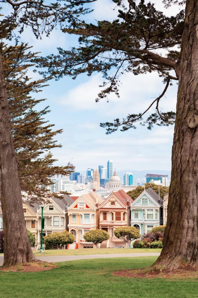 cosa vedere in california san francisco e sequoia park-27